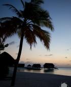 Maldives Dawn 2