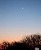 Namibia Moonrise